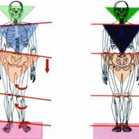 Malocclusione e corpo 1°